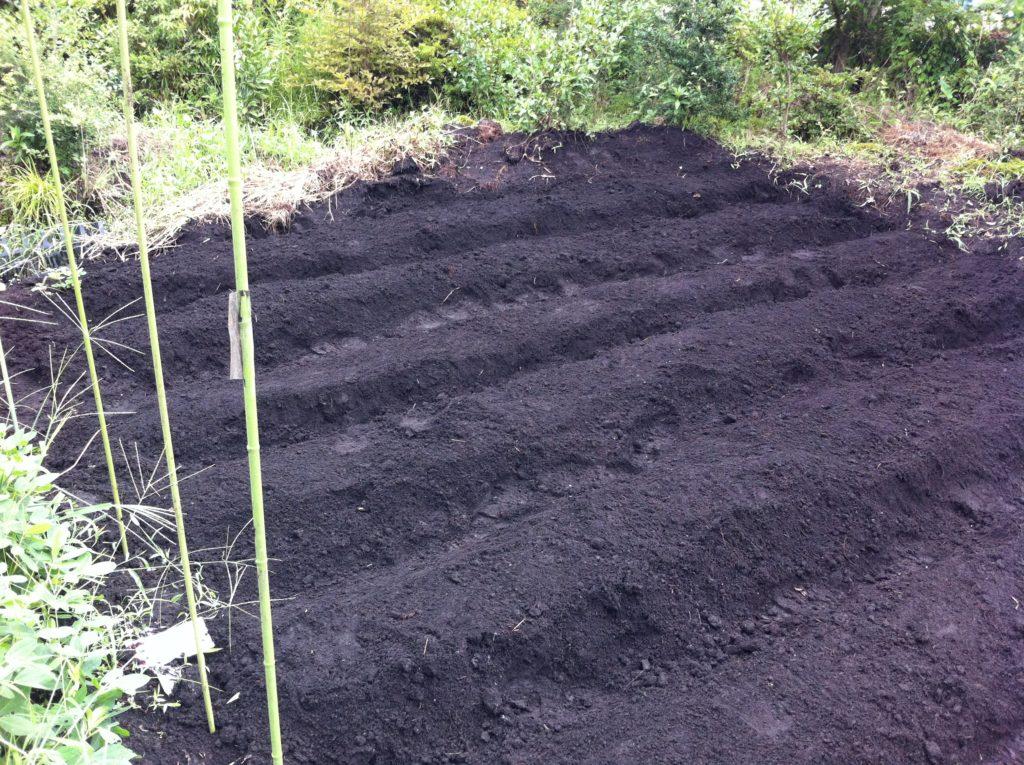 作付け前の畝作り