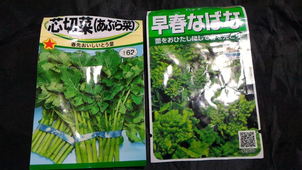 油菜と早春なばなの種①