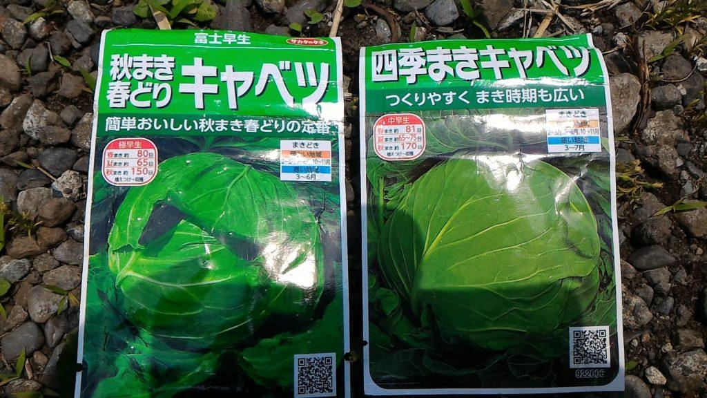 キャベツの種袋①